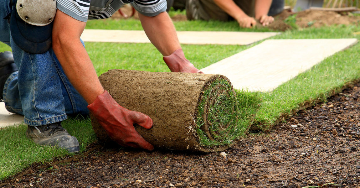 Landscaping Financing Options